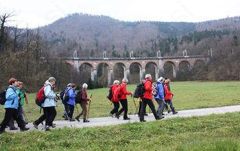 Svizci od Borovnice do Logatca