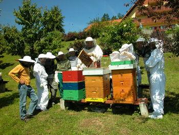 Slovenci gojimo čebelarsko tradicijo