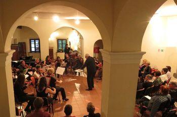 Orkester Camerata medica v Polhograjski graščini