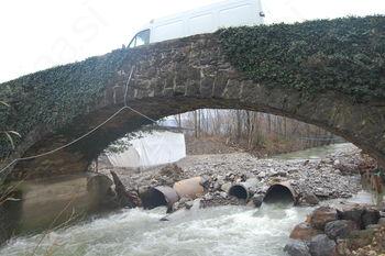Troštov most bo dobil družbo