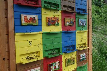 Tečaj za čebelarje začetnike
