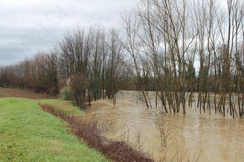 Poplave 5.1.2014