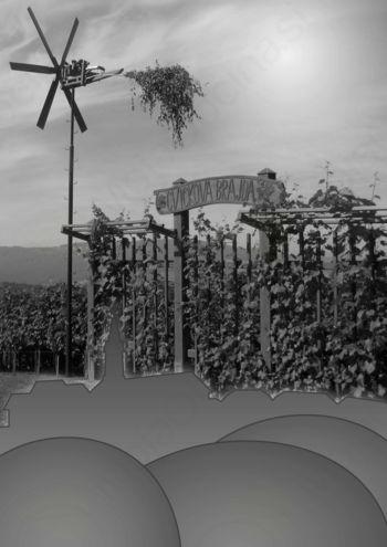 Ob 44. Tednu cvička: Razstava gradiva o vinu