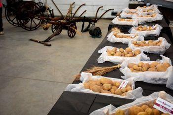 Pridelovalci semenskega krompirja so se srečali v Ivančni Gorici