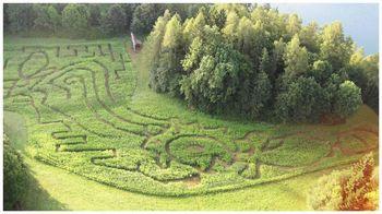Tematski park v naravi Labirint Bled 2012