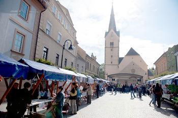 18. Mirovniški festival v Slovenj Gradcu