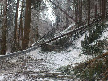 Informacije za javnost v zvezi z vremenskimi razmerami na območju MO Slovenj Gradec - aktualizirano