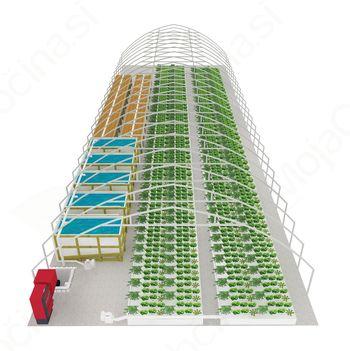 Na Lukovici bodo zelenjavo gojili s pomočjo rib