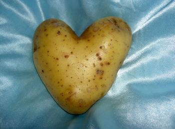 V Mokronog prihaja 15. Svetovni festival praženega krompirja