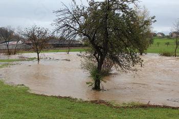 Za odpravo škode v gospodarstvu zaradi poplav najprej interventni ukrep prek Slovenskega podjetniškega sklada