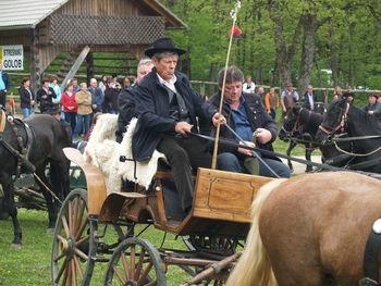Blagoslov konj na Plešivici