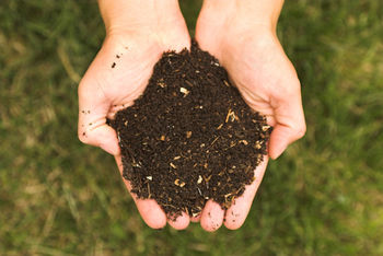 Saubermacher d.o.o. svetuje: domače kompostiranje