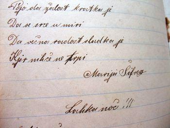 Na novo odkrita polhograjska pesnica Marija Šifrer – Bizjanova Micka
