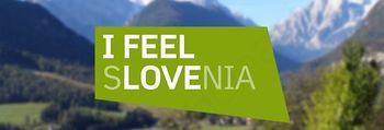 Objava javnega poziva za udeležbo slovenskih podjetij na poslovno-investicijskem forumu dne 22.septembra 2016