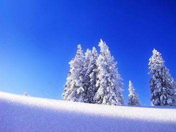 Zimska služba