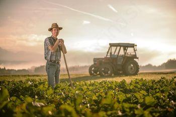 Sprejet pravilnik za subvencioniranje kmetijske dejavnosti