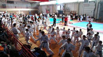 Naši karateisti osvajajo medalje!