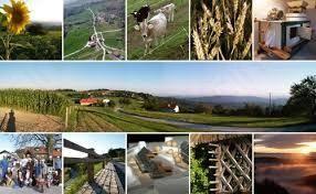 Javni razpisi v kmetijstvu
