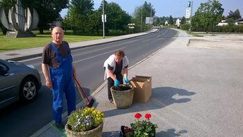 Urejanje cvetličnih korit.