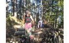 44 voženj do drvarnice