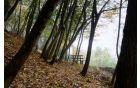 Park postaja prostor oddiha Foto: Primož Kožuh