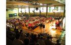 Nastopajoči zbori DI ZDIS
