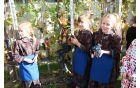 Trgatev so opravile mlade roke učenk šole.