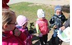 Spoznavanje rastlin