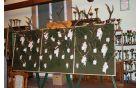 Razstavni pano LD Puščava s trofejnimi jeleni