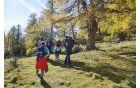 Planinci sedmih, osmih in devetih razredov so obiskali  in raziskovali narodni park Nockberge v  sosednji Avstriji. Foto: Mojca Odar