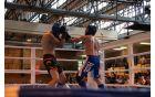 Finale Low kick člani -71 kg