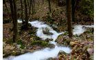 Potok, voda, fluid...  Foto: Primož Kožuh