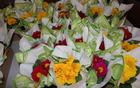 Pomladno cvetje za 8. marec