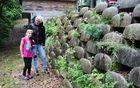 Lili in Larisa ob nastajajočem zeliščnem vrtu.