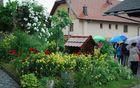 Visoki gostje so si ogledali tudi Pavčkov dom v Šentjuriju, kjer je doma kmetica leta Jelka Krivec.