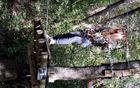 Foto: Taborniki rodu Odporne želve