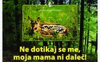 5979_1493928850_plakat_lzs_srnica.jpg