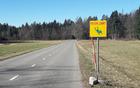 Opozorilni znak za zaščito zavarovanih dvoživk pred povozom