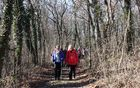 Nekoč glavna pot iz Šmarij v Ustje je tudi nas pripeljala v dolino reke Vipave