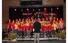 *Mladinski pevski zbor Osnovne šole Vojnik ter učiteljski zbor šole.