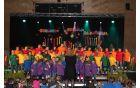 *Otroški pevski zbor POŠ Nova Cerkev je ob spremljavi Modrijanov zapel dve pesmi.