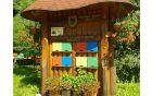 Čebelarstvo Dremelj na poti