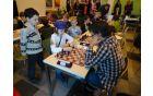 Asja Čebron zavzeto igra šah, Foto: Robert Čebron
