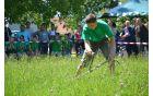 Regijske kmečke igre, Tabor 2014