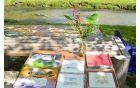 """Pšata, """"Na tržnici"""" skupinska slika, šopek in mizica Bince Lomšek s panjskimi končnicami in ilustracijami"""