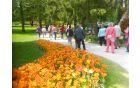 Sprehod in ogled razstave cvetja v Mozirskem gaju