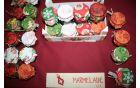 Domače marmelade    Foto: Jaka Darovec