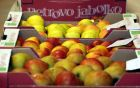 ekološka jabolka pridelana z znanjem
