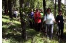 Z Velikega Gradišča smo se v smeri Krvavega potoka spuščali po osončenem gozdnatem grebenu