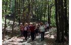 V smeri Kokoši smo nadaljevali pot po gozdni cesti